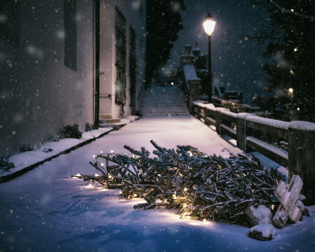 rue neige sapin de noel